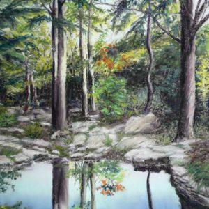 Colin's Pond